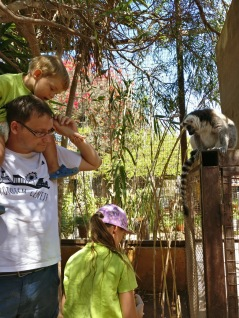 Tenerife_Monkey Park_4